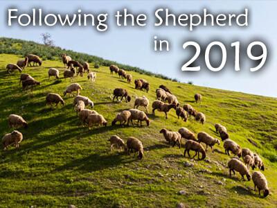 Following The Shepherd in 2019